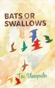 Bats or Swallows cover
