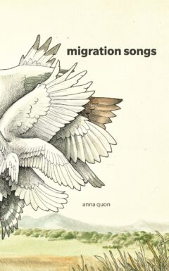 Migration Songs cover