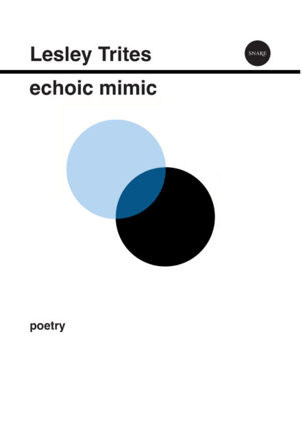 Echomimic-cover
