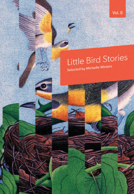 Little Bird Stories Volume 8 cover with fragemented bird image