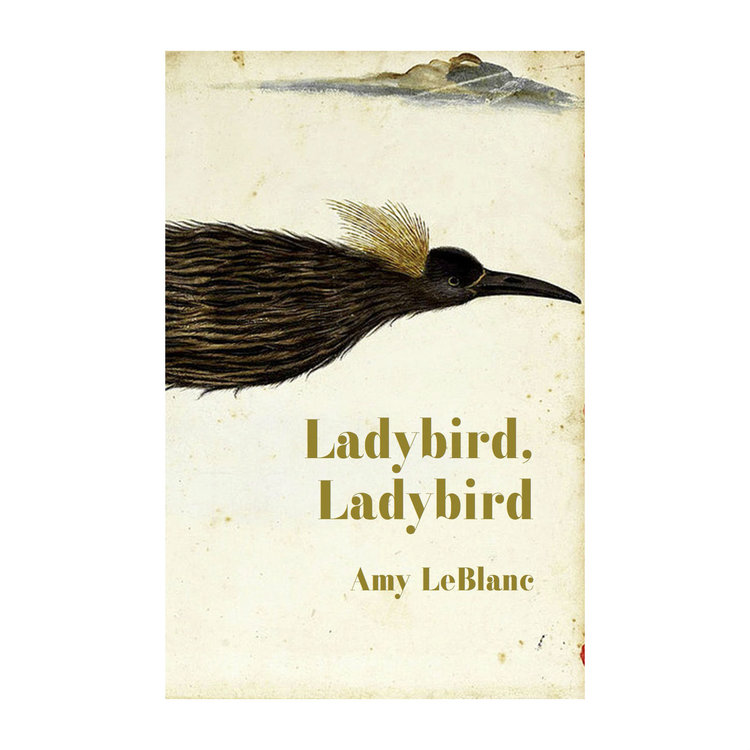 Cover of the chapbook Ladybird, Ladybird by Amy LeBlanc, who is the subject of this interview.