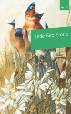Book cover: Little Bird Stories Volume 10, an anthology of contest winners