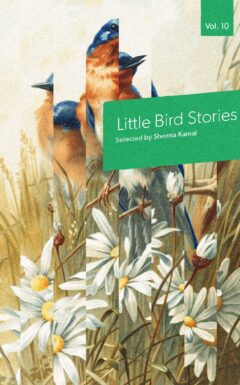 Cover of Little Bird Stories Volume 10, features the book title on a green box against a fragmented background of birds and plants