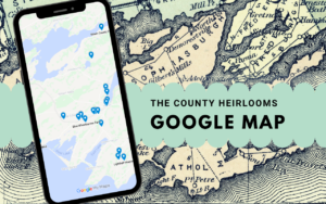 Image of am iphone showing a Google map imposed over an old-timey map of Prince Edward County. Text reads The County Heirlooms Google Map